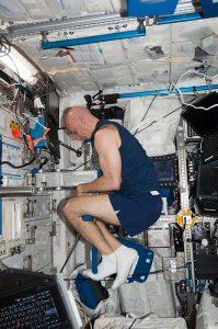 ESA-Astronaut Luca Parmitano, Expedition 37, im HRF-1-Experiment (Bild: NASA)